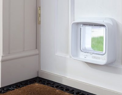 Buy Pet Doors
